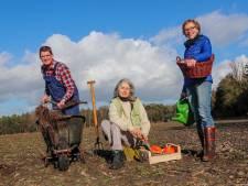 Gildebosch in Waalre: natuur of toch villa's?