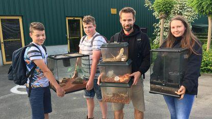 En plots staan gestolen reptielen weer aan de schoolpoort
