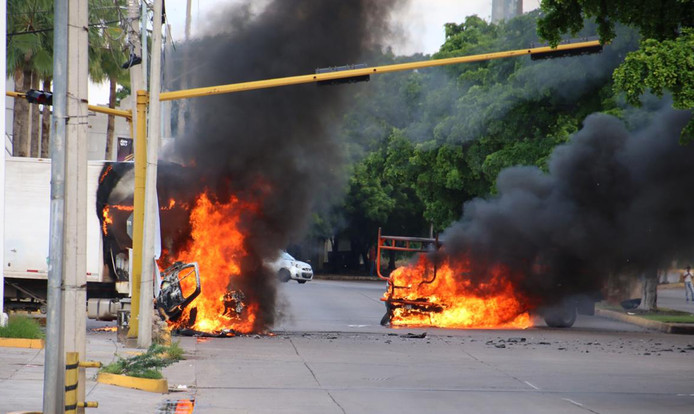 Diverse voertuigen gingen donderdag in vlammen op.
