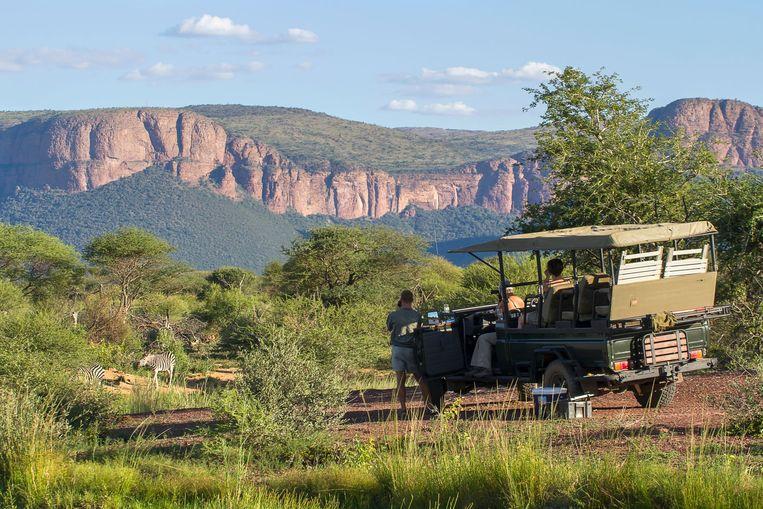 De droomreis van Matthias (6) is naar Afrika om er wilde dieren te spotten.
