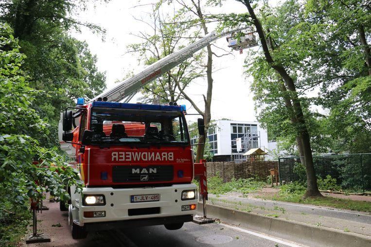 In de kasteelstraat sloot de brandweer de straat even volledig af voor enkele gevaarlijke takken.