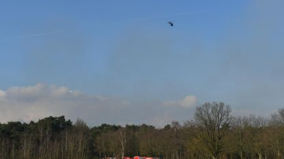 Forse natuurbrand op militair terrein in Brecht: zes hectare heide in brand