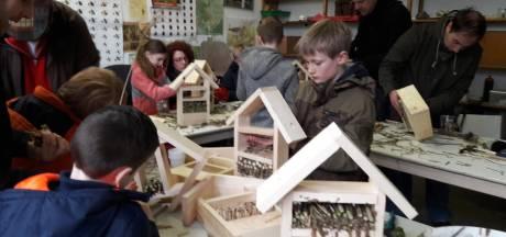 Groesbeek is in een klap 40 insectenhotels rijker