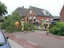 Boom valt op auto in Rijssen na rukwind