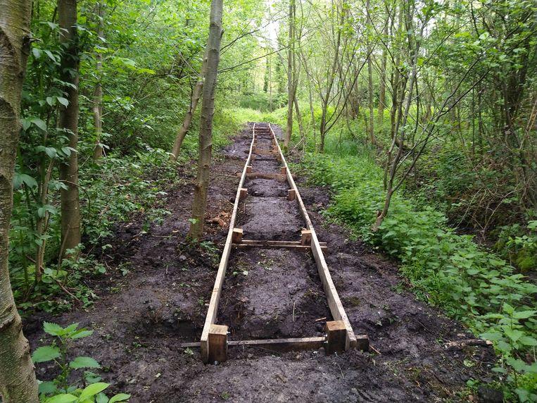 In de natste gedeelten van het Peutiebos worden vlonderpaden aangelegd.