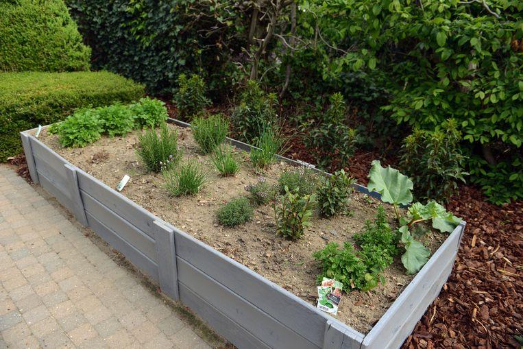 Nieuw in centrum Holsbeek: Bistro Bo-Bonne. In de tuin staat een heuse kruidenbak.