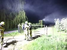 Veel rook bij brand aan coniferenhaag in Ophemert