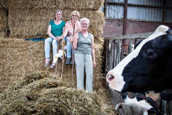 Ida Besten (midden) noemt de Boerenpelgrimstocht 'eigenlijk heel simpel'. Links: Liesbeth Kemper, rechts: Veroni Nij Bijvank.