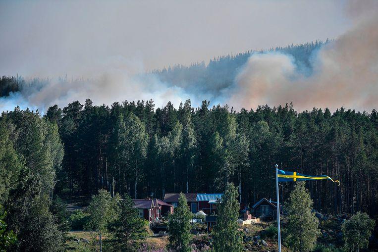 Grote rookwolken stijgen op vanuit een bos bij Ljusdal in Zweden.