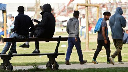 """Brusselse MR wil hek rond Maximiliaanpark: """"Sluit het af met traliewerk"""""""
