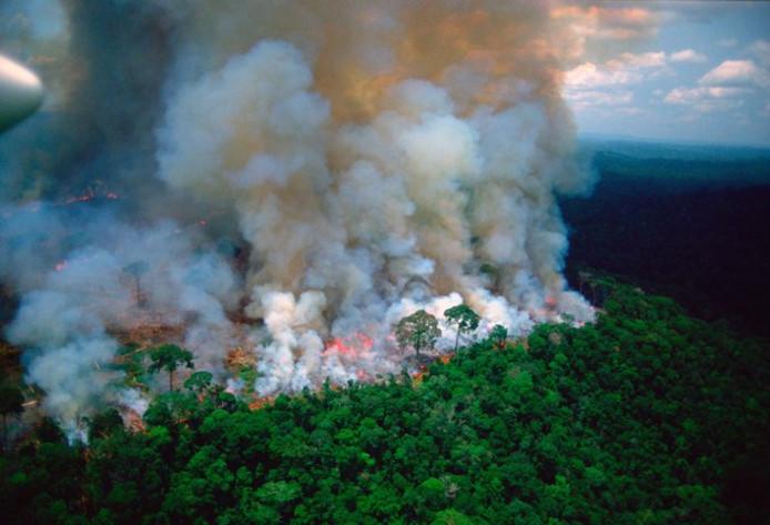Cette photo a été prise par l'Américain Loren McIntyre, connu pour son travail pour National Geographic et décédé en 2003.
