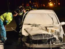 Automobilist veroorzaakt ravage in Rijsbergen