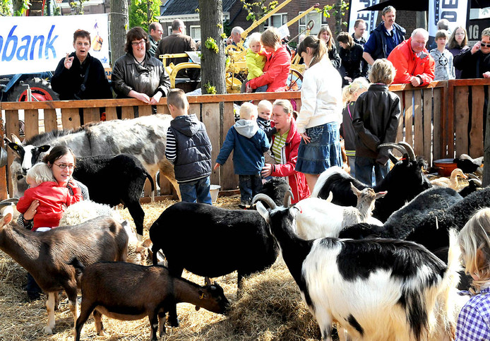 Bert's Animals op de jaarmarkt Schoonrewoerd.