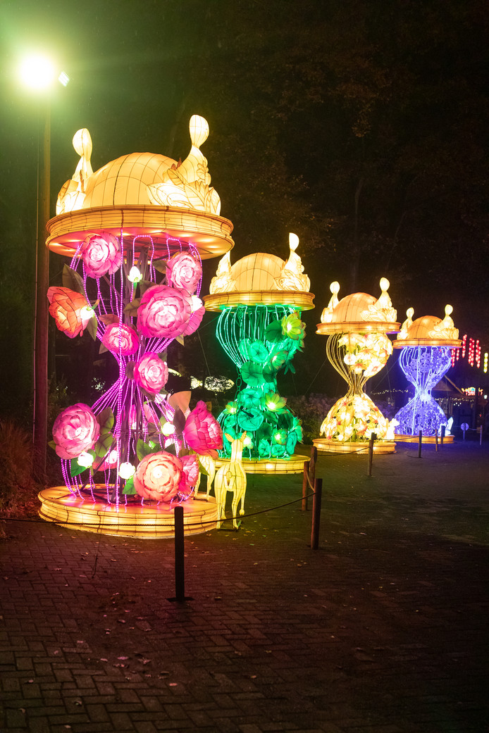 Festival Lights of China laat ook allerlei kunstwerken zien.