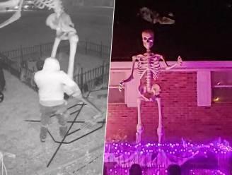 Dief rooft gigantisch skelet