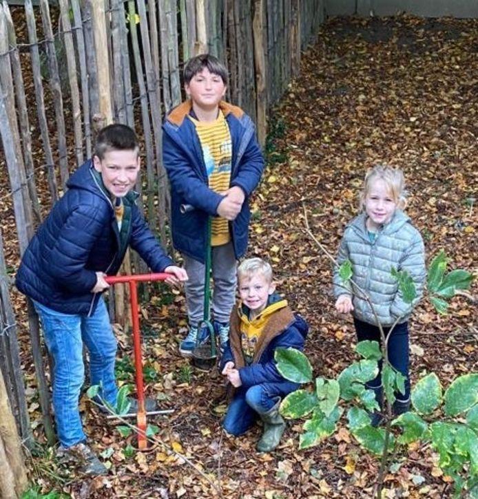 De kinderen plantten maar liefst 1.000 boshyacinten.