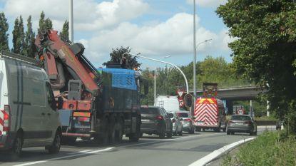 Betonspoor hindert verkeer op knooppunt R8-A19
