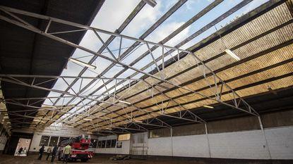 Storm blaast dak van manege weg: 75 paarden staan doodsangsten uit