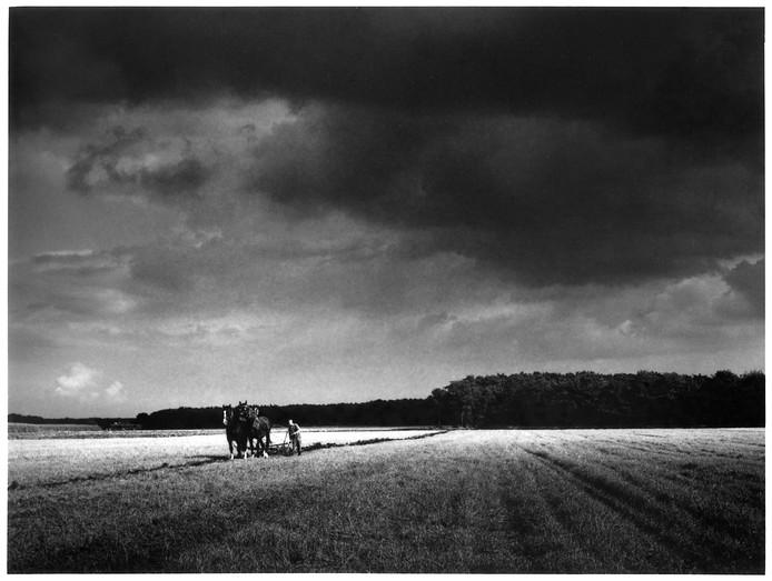 Een ploegende boer in Westerhoven. Guntlisbergens mooiste foto, volgens diens dochter Tjabine.