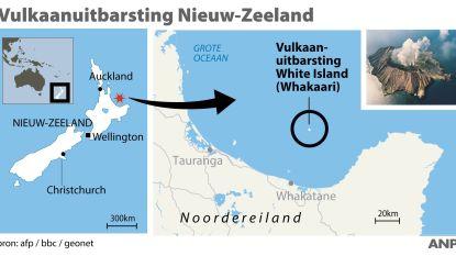 """Vlaams koppel ontsnapt aan vulkaanuitbarsting in Nieuw-Zeeland: """"We beslisten gelukkig om de uitstap toch maar niet te doen"""""""