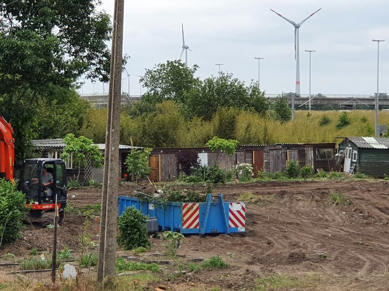 Op enkele schuttingen na en de achterste rij tuinhuisjes schiet er niets meer over van de Volkstuintjes Brecht.