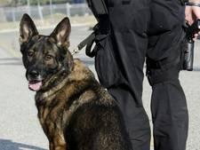 Drugshond speurt partij heroïne van 20.000 euro op in trein van Dordrecht naar Roosendaal