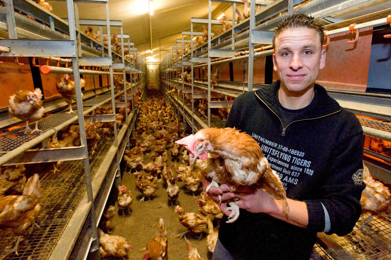 Pluimveehouder Jeroen Bertens tussen zijn  kippen.