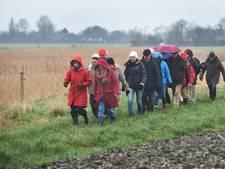'Vanuit het Middelburgse natuurgebied Cleene Hooge zie je de duinen'