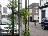 Straatbeeld: Experiment met 'lantaarngroen' voor te smalle straatjes