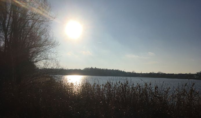 De ochtendzon over het Gat van Waalre, waar het bovendien barst van de vogels.