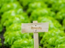 Prijs Bergeijk voor bijzondere groene initiatieven