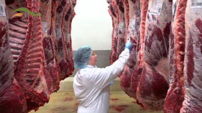 """""""FAVV wist al 2 jaar van vleesfraude bij Veviba"""""""