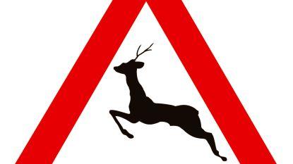 Hert gestorven na aanrijding door auto