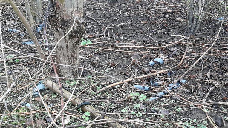 Archiefbeeld takken en vuil in het bos