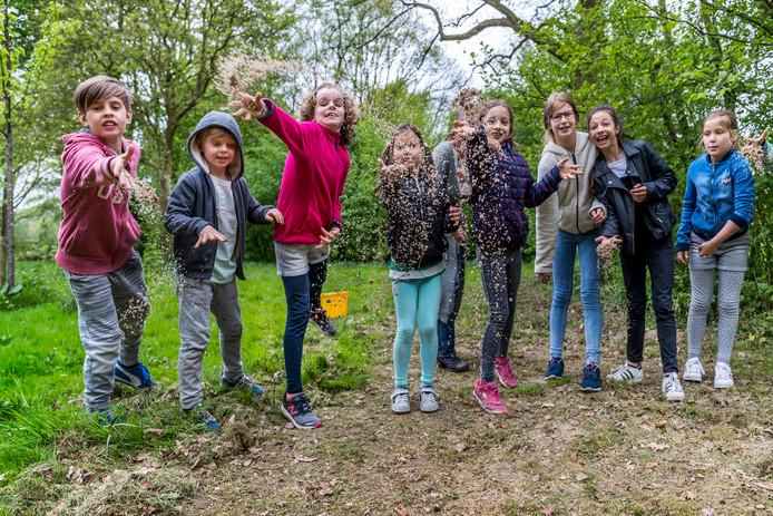 Kinderen zaaien paden in de polder in met bloemenzaad voor de bijen.