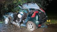 Jonge chauffeur zwaargewond bij crash tegen boom in Zingem