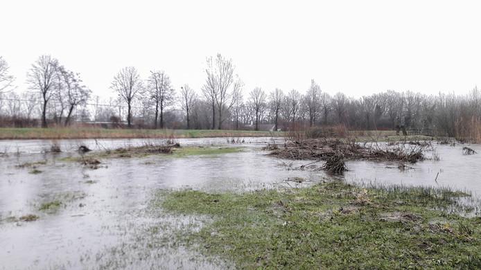 De Aa of Weerijs is bij de zuidelijke rondweg in Breda buiten zijn oevers getreden.