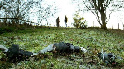 OVERZICHT. Sinds 1979 gingen tientallen Belgische F-16's verloren