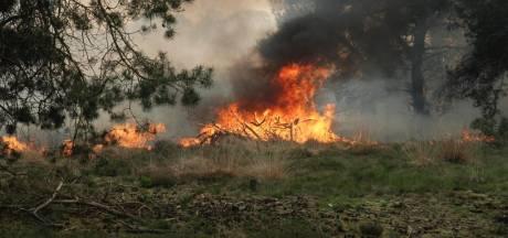 Grote natuurbrand op Strabrechtse Heide in Heeze, ongeveer 5 hectare heide verloren gegaan