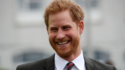 Britse prins Harry viert 34ste verjaardag in besloten kring