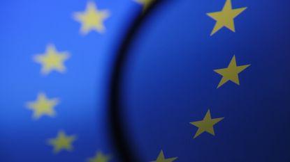 Toch geen verbod op 'memes': Europees parlement stemt tegen hervorming van internetwetgeving