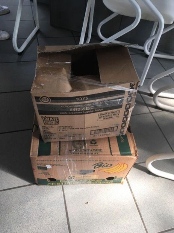 Dierenbescherming Mechelen waarschuwt baasjes geen katten te vervoeren in afgesloten kartonnen dozen en al zeker niet bij deze hitte.