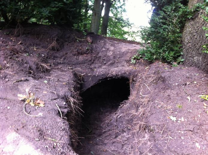 De ingang van een van de tunnels bij het Ronde Huis. foto Roel Kleine