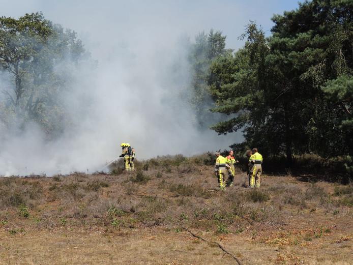 Brandweerlieden blussen een bosbrand in het vennengebied tussen Alverna en Overasselt.