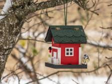 Mezen laten eikenprocessierups links liggen in Hof van Twente