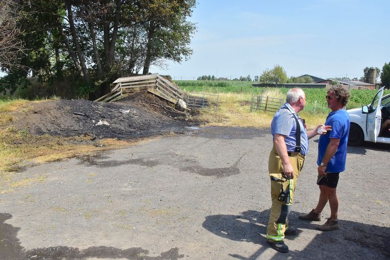 Jean-Paul Esprit (rechts), in gesprek met Johan Vandeputte, postoverste van de brandweer in Ardooie, met op de achtergrond de weggebrande berm. Ook de bomen leden fel onder de brand.