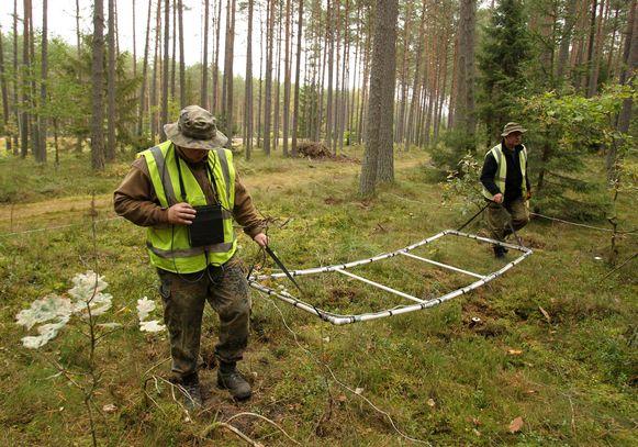 Poolse politieagenten zoeken met een metaaldetector naar niet-gedetoneerde explosieven in een bos bij het dorpje Spychowo in het noordoosten van het land. Archieffoto.