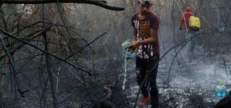 Vuurzee raakt kwetsbare en zeldzame dieren hard