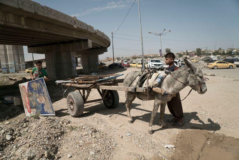 Twee jongens laden oud ijzer op een ezelkar in Mosul. Beeld Hollandse Hoogte / AP | Associated Press