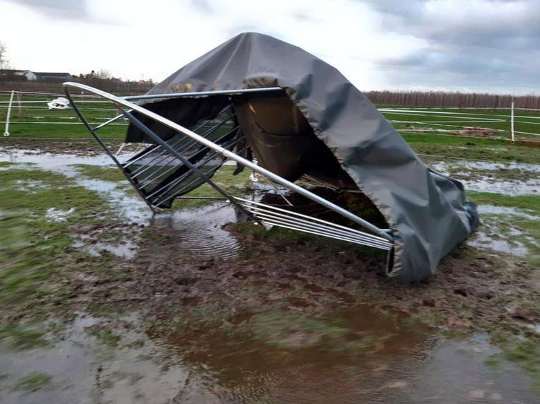 De schade is groot bij Polly's Ranch.